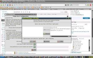 Menambahkan OpenOffice sfs ke Puppy OS